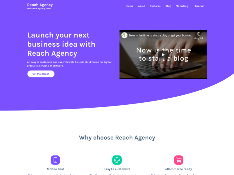 Mai Reach Agency screenshot